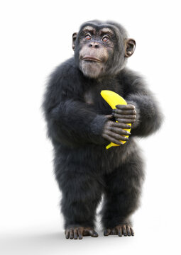 Cute little baby monkey holding a banana on a white background. 3d rendering