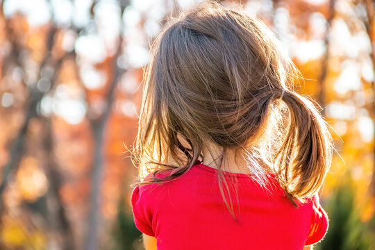 Back of a little girl's head on a colorful fall day