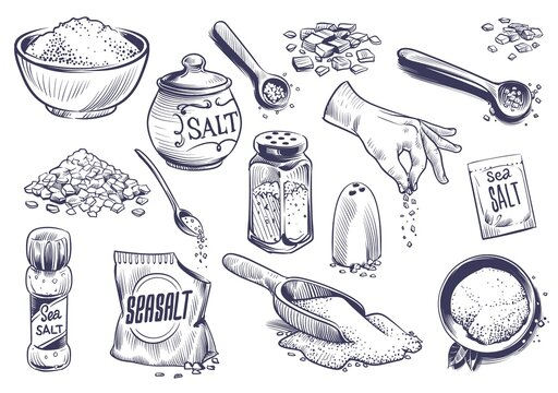 Hand drawn salt. Salting crystal, glass bottle with powder, spoon with spice, saltshaker collection, himalayan or sea salt in engraved style set, cooking ingredient vector illustration