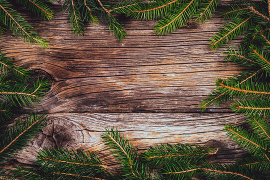 Pine leaves decoration on wood plank, frame border design. Merry Christmas and New Year holiday background. top view.