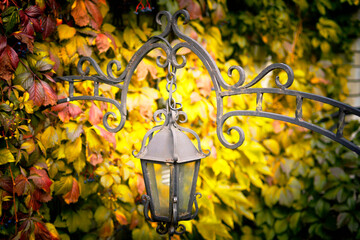 old streetlight on a background of autumn leaves Fotomurales