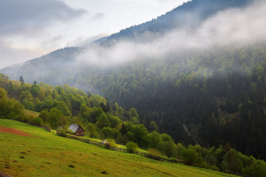 Spring morning rural landscape in the Carpathian mountains. Cloudy sky and mist over the forest.