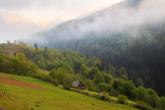 Spring cloudy morning rural landscape in the Mizhhiria, Carpathian mountains.