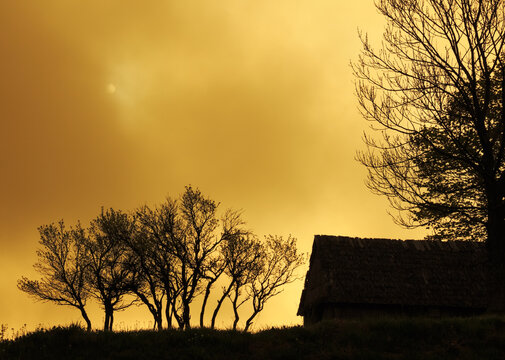 Gold graphically landscape with house and trees on the background of gloomy foggy sky