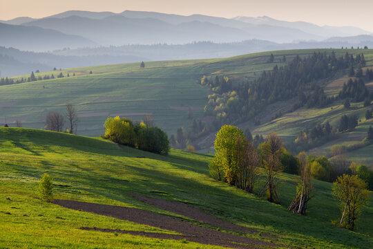Spring morning rural landscape in the Carpathian mountains. The misty hills at sunrise.