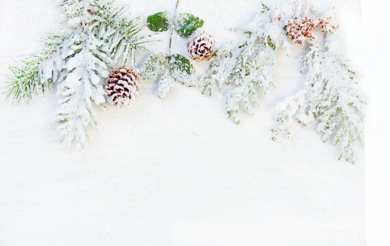 Christmas or winter themed background with snowy fir branches, copy space