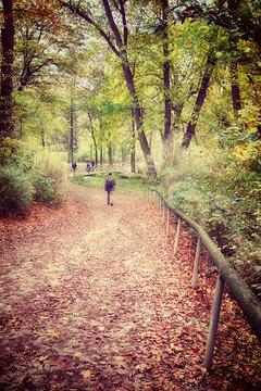 Munich Englischer Garten in autumn, people take a walk along a path covered by fallen leaves
