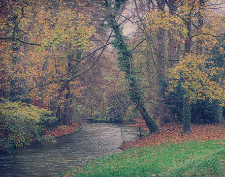Munich Englischer Garten in autumn,beautiful park in the heart of the city  to take a stroll in the nature
