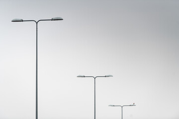 Repetitive street lights over a highway with a neutral grey background Fotomurales