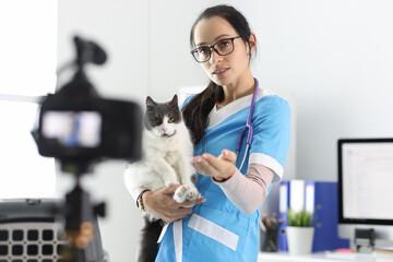 Veterinarian records the examination of the cat on camera. Helping pets online concept
