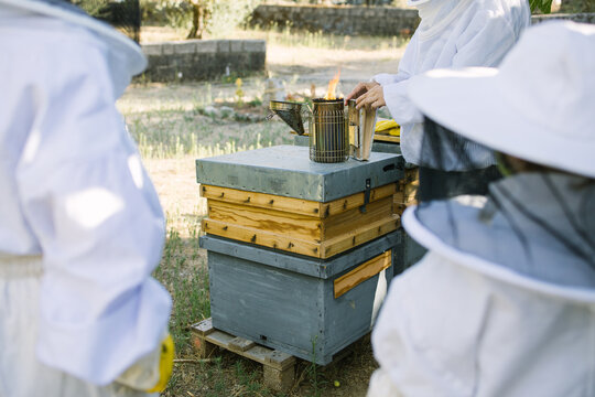 Unrecognizable crop beekeepers on protective costumes using bee smoker in apiary in summer