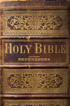 Old family Bible 1800's