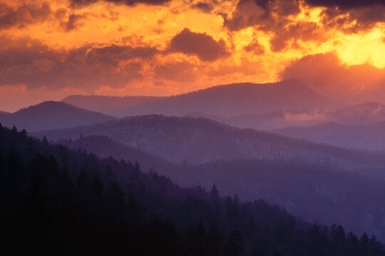 Scenic view of mountain and forest during sunset in Great Smoky Mountains National Park