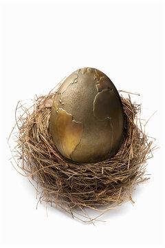 Large world globe egg in nest