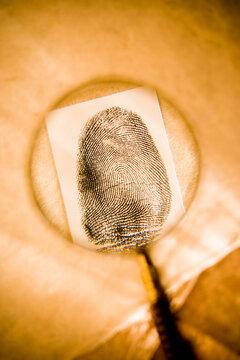 Magnifying glass examining a thumb print.
