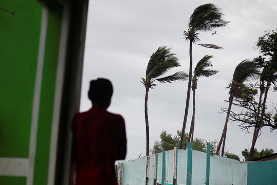A man observes palm trees swaying by the wind as Storm Iota approaches, in Cedeno