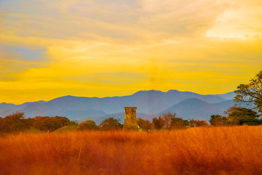 Sunset of Cheomseongdae observatory with pink muhly grass field in Gyeongju, Korea