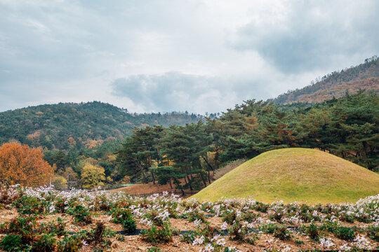 Seoak-dong ancient royal tombs in Gyeongju, Korea