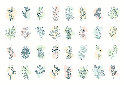 Vector set of nerd elements with circles of different colors on an isolated background. Tropical plants, leaves and branches with flowers. Hand drawn style. For printing on fabric and clothing,