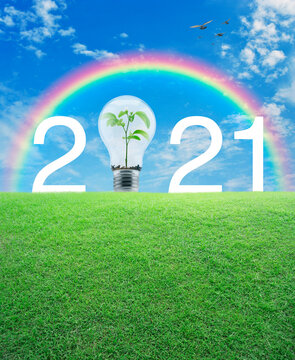 2021 white text and light bulb with small plant inside on green grass field over rainbow, birds and blue sky with white clouds, Happy new year 2021 ecological cover concept
