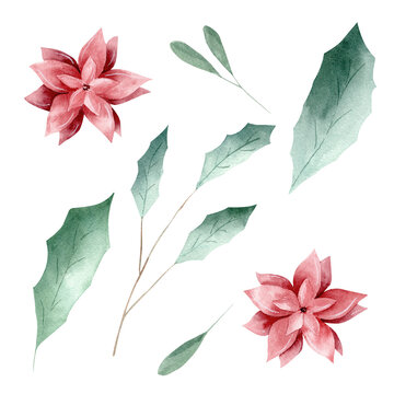 Watercolor green leaves and red flowers isolated on white background.
