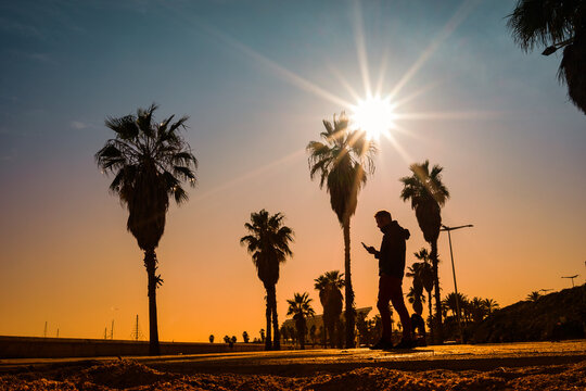 Silhouette of young man with mobile phone walking at sunset