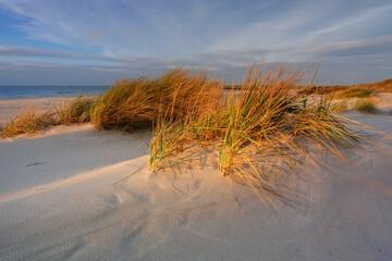 Morze Bałtyckie, plaża ,wydmy ,biały piasek,trawa,Kołobrzeg,Polska.
