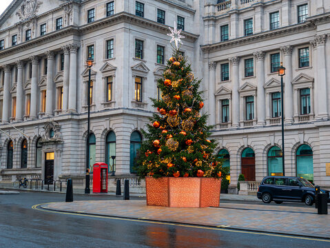 Christmas tree outdoors decorated in winter holiday on Westminster area of London on the street