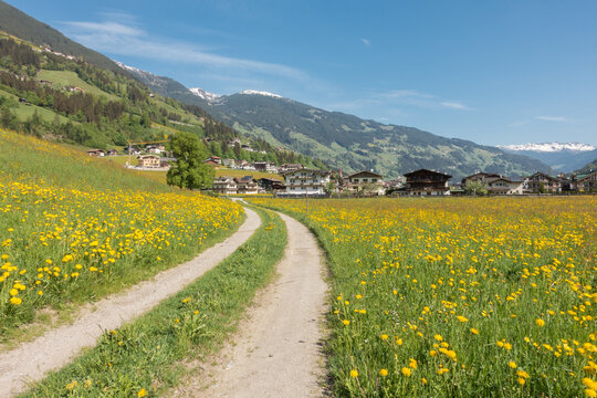 Feldweg ins Urlaubsdorf Schwendau Hippach im Zillertal in Tirol