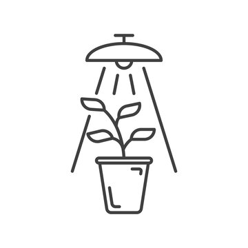 Plant under lamp icon. A simple depiction of growing a plant under artificial conditions under artificial light. Isolated vector on white background.