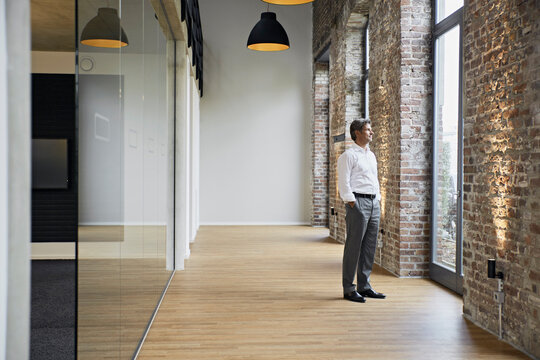 Mature businessman standing at the window in modern office
