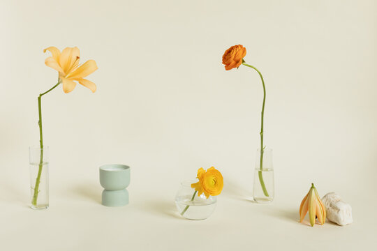 variety of flowers in different vases spread across light cream backdrop