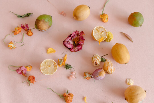 still life with rotten fruits and faded flowers