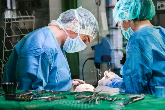 Vet doctor performing surgery with assistant in clinic