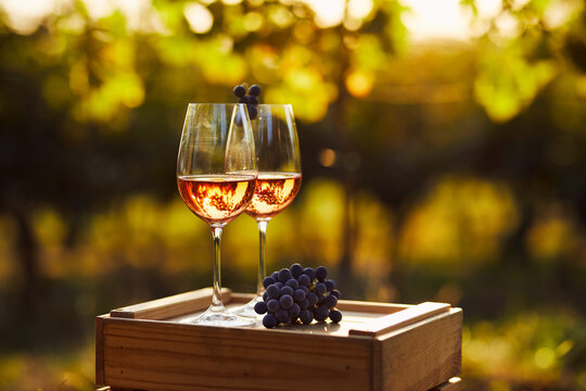 Two glasses of rose wine on a wooden crate in the vineyard