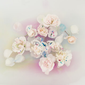white roses floating in water with multi colored pastel aquarel paint dots