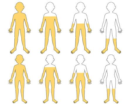体の水分 黄色