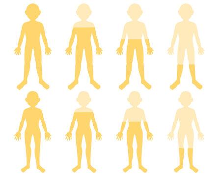 体の水分 黄色(線無し)