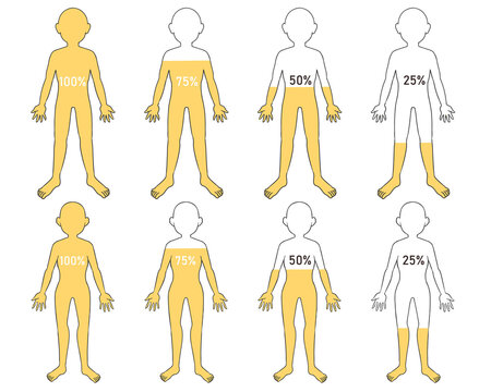 体の水分 黄色 数字付き