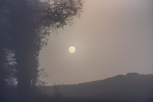 misty morning in the fields with a view of the sun through the fog