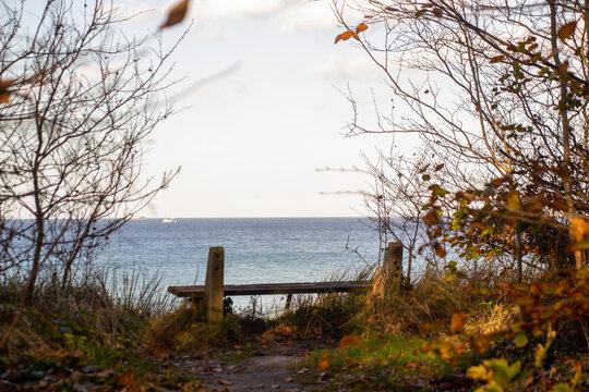 Der perfekte Platz am Meer - Eine Sitzbank im Gespensterwald Nienhagen im Herbst