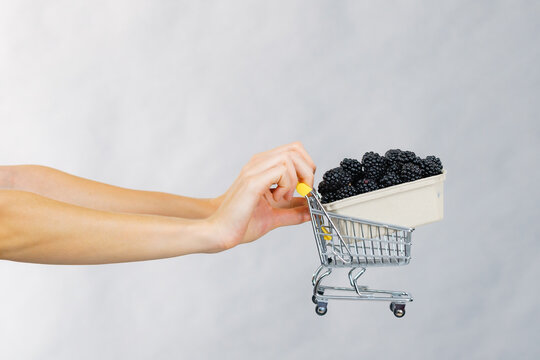Hand holds blackberry fruits in shopping cart