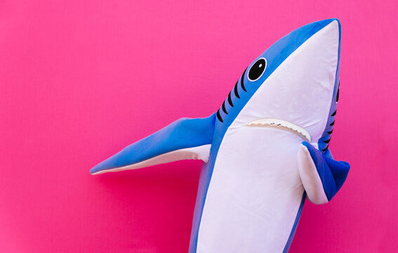 Close-up Of Shark Gesturing Against Pink Background