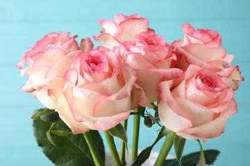 Beautiful pink roses on light blue background, closeup