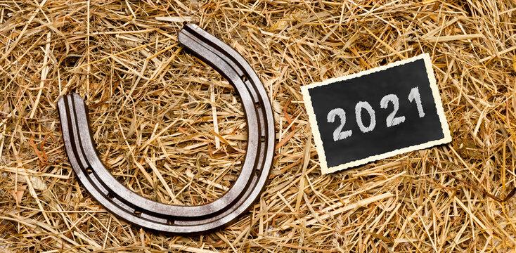 Hufeisen im stroh mit Foto 2021
