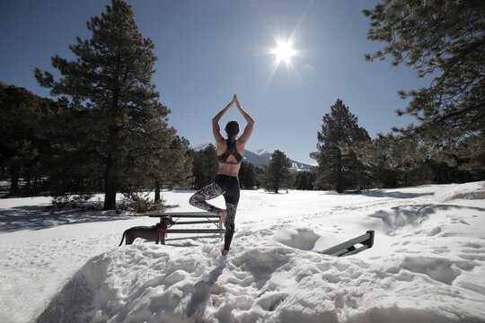 Rear View Of Woman Doing Yoga By Dog On Snow