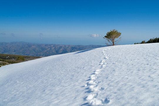 Spain, Andalucia, Sierra Nevada, Mulhacen