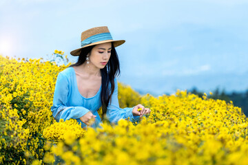 Wall Mural - Pretty girl enjoying in chrysanthemums field in Chiang mai, Thailand.
