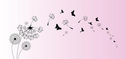 Fototapeta Abstract background of a dandelion for design