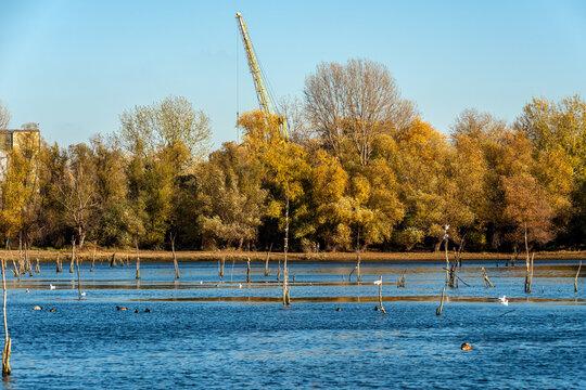 Novi Sad, Serbia - November 19, 2020: Danube island (Šodroš) near Novi Sad, Serbia.